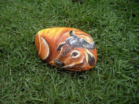 """""""Живые"""" камни - необычный элемент декора сада"""